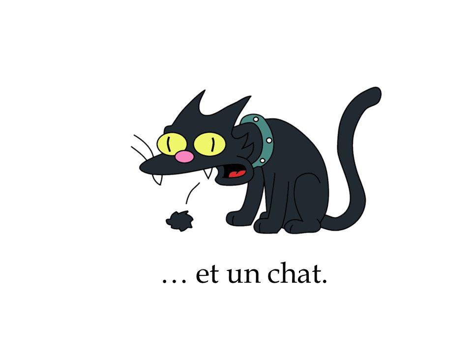 … et un chat.
