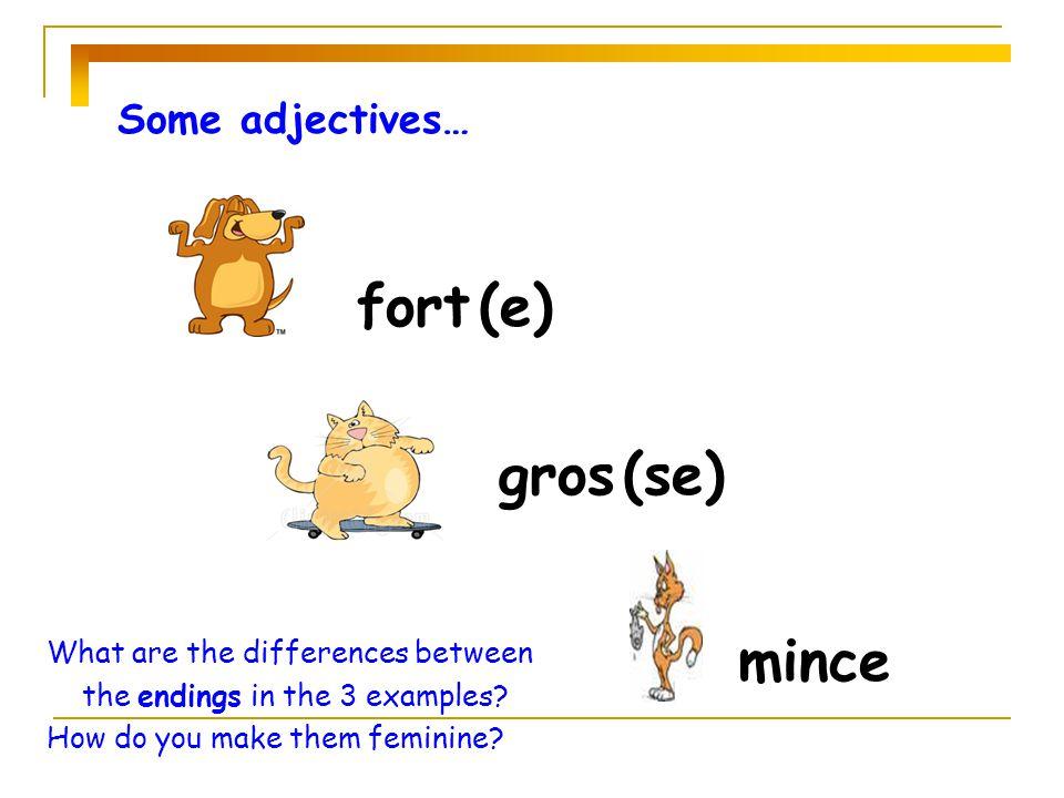 petit (e) grand (e) Some adjectives…