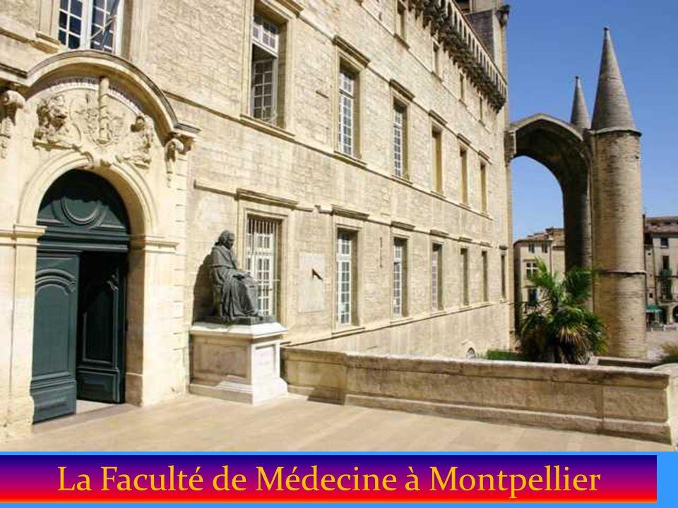 L hôtel de Région à Montpellier