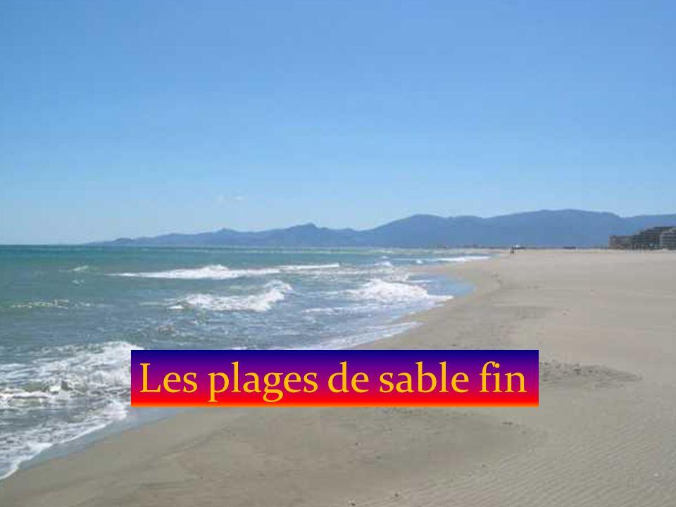 Les plages de sable fin