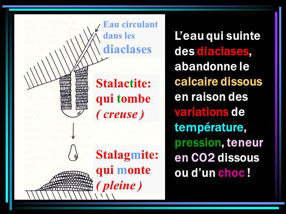 Stalactite: qui tombe ( creuse ) Stalagmite: qui monte ( pleine ) Eau circulant dans les diaclases Leau qui suinte des diaclases, abandonne le calcaire dissous en raison des variations de température, pression, teneur en CO2 dissous ou dun choc !