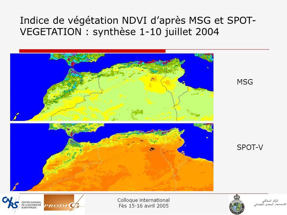 Colloque international Fès 15-16 avril 2005 24 Indice de végétation NDVI daprès MSG et SPOT- VEGETATION : synthèse 1-10 juillet 2004 MSG SPOT-V