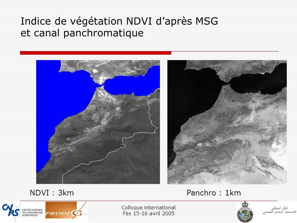Colloque international Fès 15-16 avril 2005 26 Indice de végétation NDVI daprès MSG et canal panchromatique NDVI : 3kmPanchro : 1km