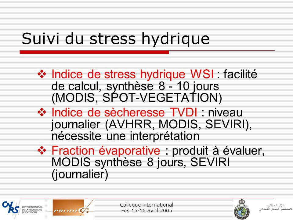 Colloque international Fès 15-16 avril 2005 38 Suivi du stress hydrique Indice de stress hydrique WSI : facilité de calcul, synthèse 8 - 10 jours (MOD