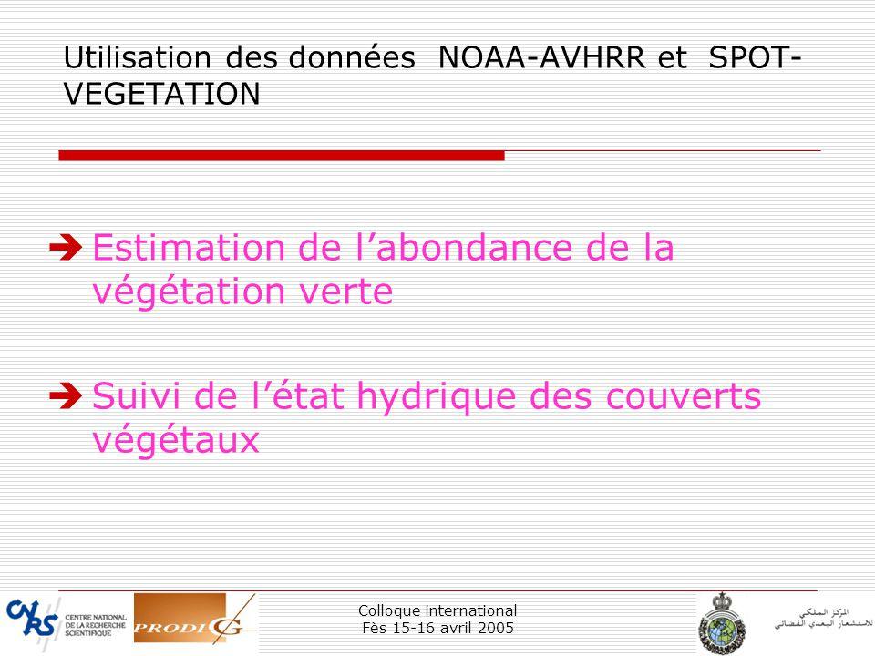 Colloque international Fès 15-16 avril 2005 5 Utilisation des données NOAA-AVHRR et SPOT- VEGETATION Estimation de labondance de la végétation verte S