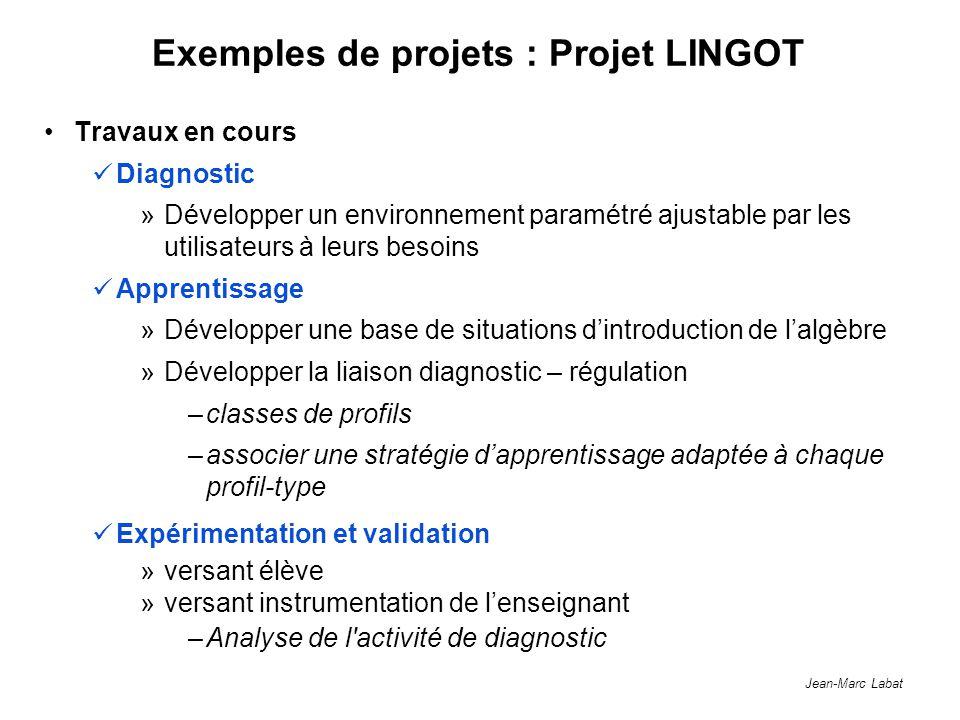 Jean-Marc Labat Exemples de projets : Projet LINGOT Travaux en cours Diagnostic »Développer un environnement paramétré ajustable par les utilisateurs