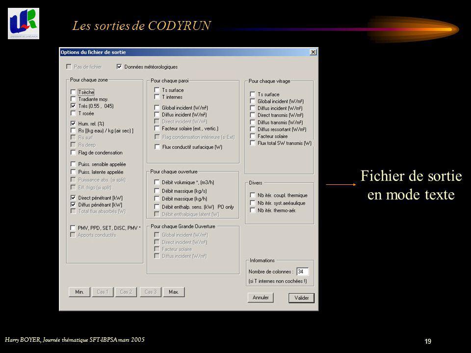 Harry BOYER, Journée thématique SFT-IBPSA mars 2005 19 Les sorties de CODYRUN Fichier de sortie en mode texte