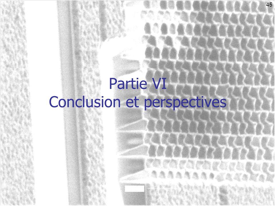 45 Partie VI Conclusion et perspectives