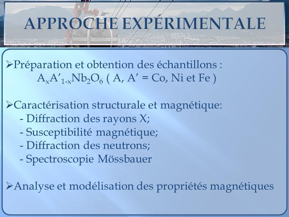 Préparation et obtention des échantillons : A x A 1-x Nb 2 O 6 ( A, A = Co, Ni et Fe ) Caractérisation structurale et magnétique: - Diffraction des ra