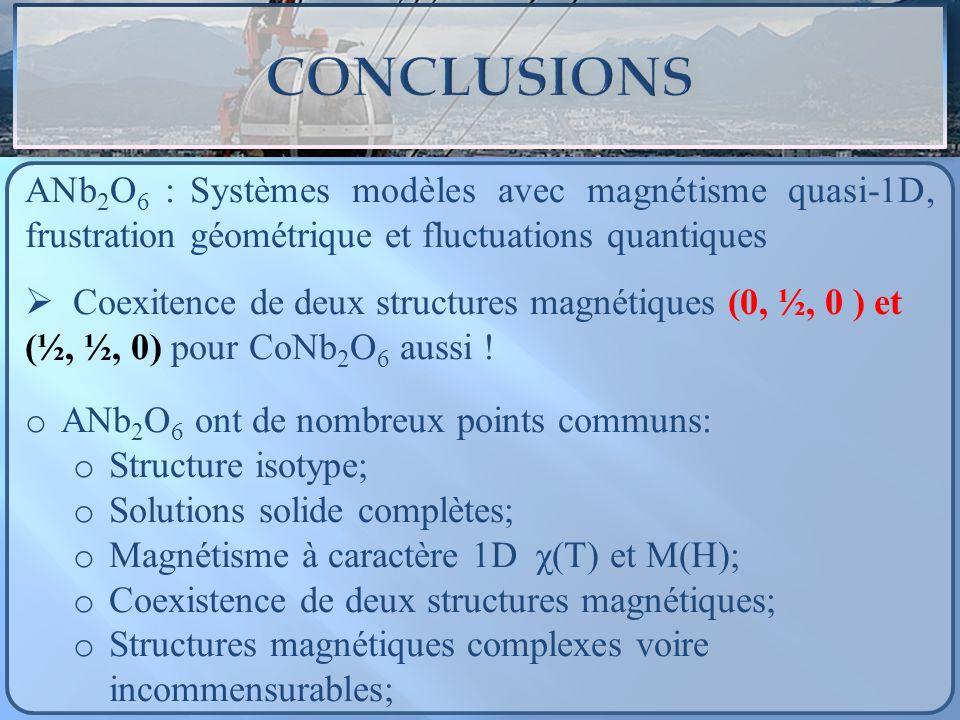 ANb 2 O 6 : Systèmes modèles avec magnétisme quasi-1D, frustration géométrique et fluctuations quantiques Coexitence de deux structures magnétiques (0