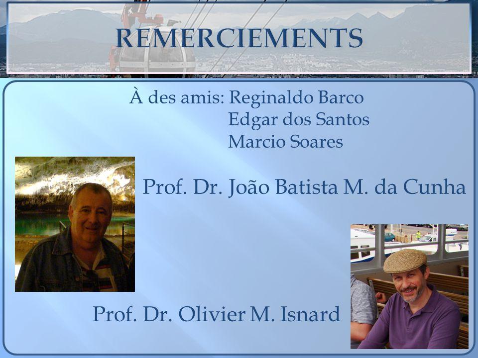 Prof. Dr. João Batista M. da Cunha Prof. Dr. Olivier M. Isnard À des amis: Reginaldo Barco Edgar dos Santos Marcio Soares
