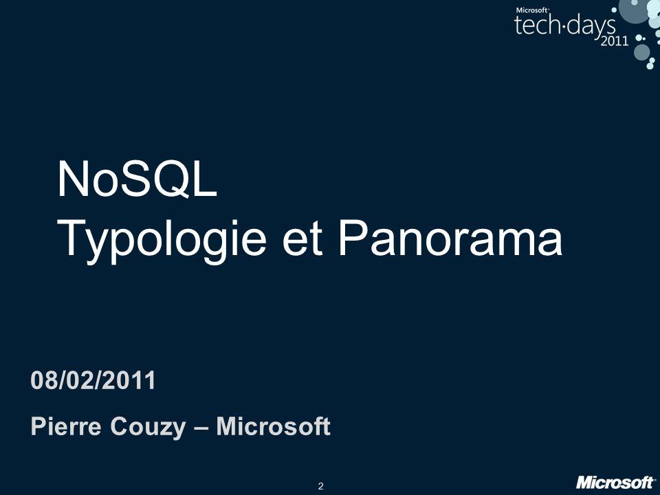 2 NoSQL Typologie et Panorama 08/02/2011 Pierre Couzy – Microsoft