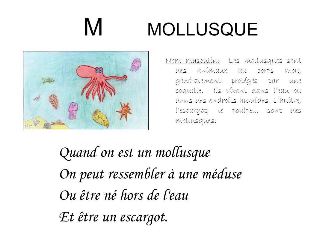 M MOLLUSQUE Nom masculin: Les mollusques sont des animaux au corps mou, généralement protégés par une coquille. Ils vivent dans l'eau ou dans des endr