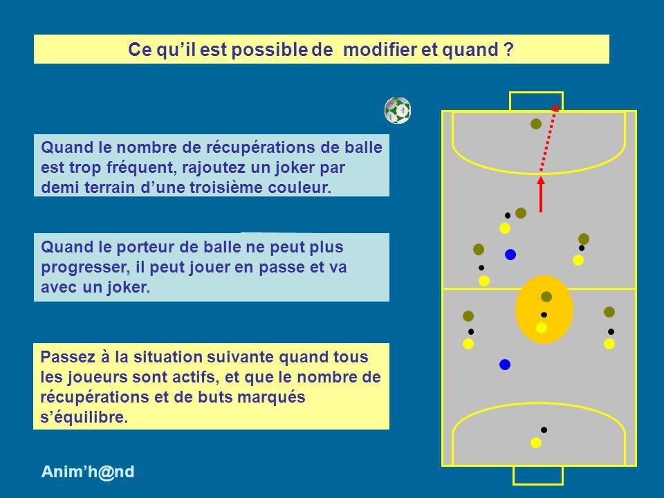 Pendant le jeu, lanimateur tentera de repérer comment les joueurs et/ou léquipe sorganisent pour arrêter la progression du porteur de balle ou subtiliser le ballon.