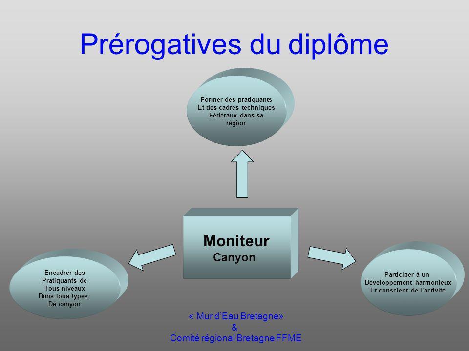 « Mur dEau Bretagne» & Comité régional Bretagne FFME Module «conduite de groupe » « Évaluer les compétences du candidat afin de pouvoir estimer si il est apte à assumer les prérogatives dun moniteur fédérale de Canyonisme.