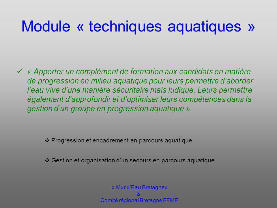 « Mur dEau Bretagne» & Comité régional Bretagne FFME Module « techniques aquatiques » « Apporter un complément de formation aux candidats en matière de progression en milieu aquatique pour leurs permettre daborder leau vive dune manière sécuritaire mais ludique.