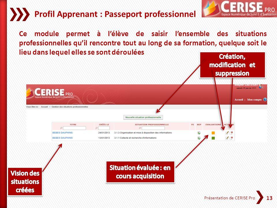 13 Présentation de CERISE Pro Profil Apprenant : Passeport professionnel Ce module permet à lélève de saisir lensemble des situations professionnelles