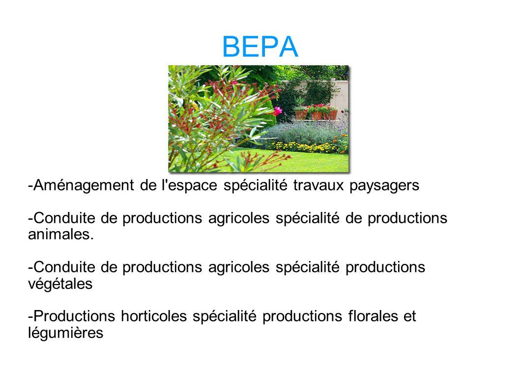 BEPA -Aménagement de l espace spécialité travaux paysagers -Conduite de productions agricoles spécialité de productions animales.