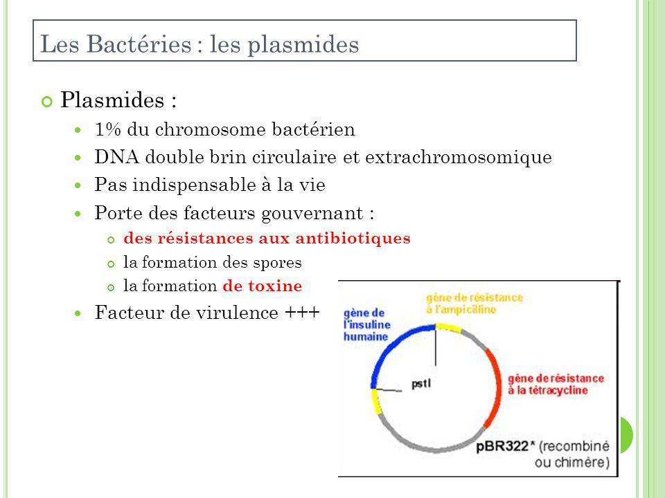 Plasmides : 1% du chromosome bactérien DNA double brin circulaire et extrachromosomique Pas indispensable à la vie Porte des facteurs gouvernant : des résistances aux antibiotiques la formation des spores la formation de toxine Facteur de virulence +++ Les Bactéries : les plasmides