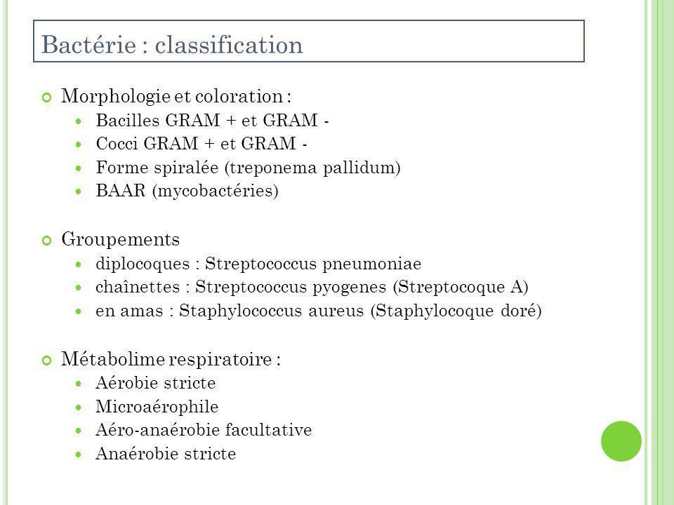 Morphologie et coloration : Bacilles GRAM + et GRAM - Cocci GRAM + et GRAM - Forme spiralée (treponema pallidum) BAAR (mycobactéries) Groupements diplocoques : Streptococcus pneumoniae chaînettes : Streptococcus pyogenes (Streptocoque A) en amas : Staphylococcus aureus (Staphylocoque doré) Métabolime respiratoire : Aérobie stricte Microaérophile Aéro-anaérobie facultative Anaérobie stricte Bactérie : classification