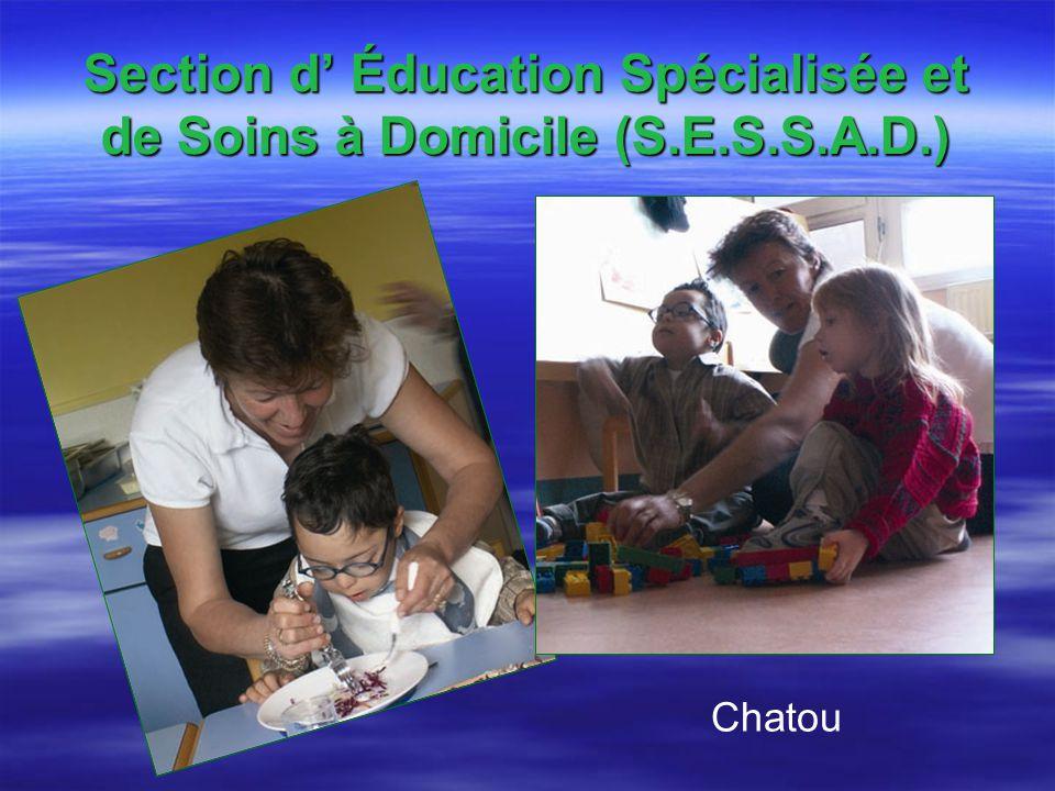 Section d Éducation Spécialisée et de Soins à Domicile (S.E.S.S.A.D.) Chatou