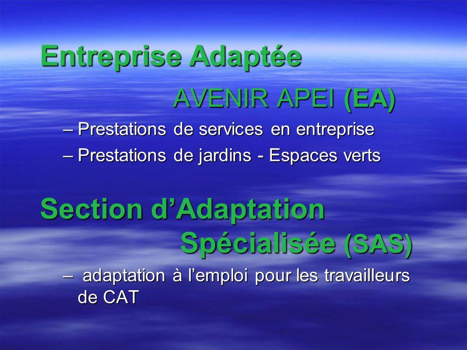 Entreprise Adaptée AVENIR APEI (EA) AVENIR APEI (EA) –Prestations de services en entreprise –Prestations de jardins - Espaces verts Section dAdaptation Spécialisée (SAS) – adaptation à lemploi pour les travailleurs de CAT