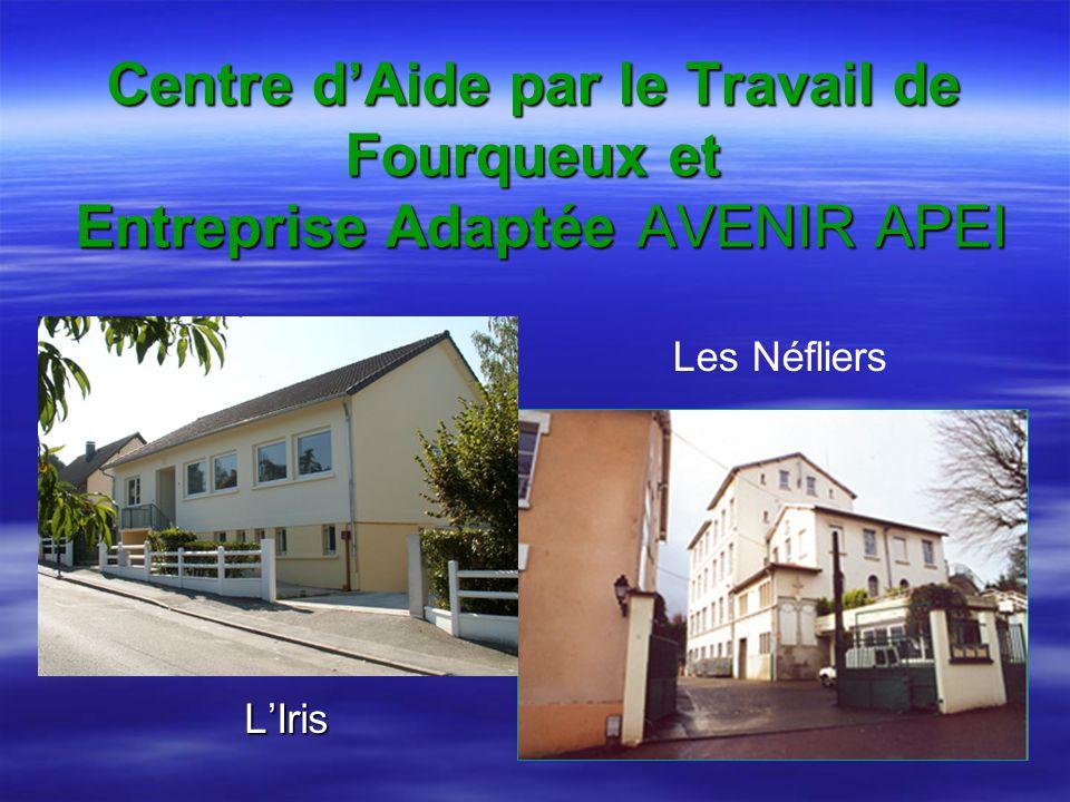 Centre dAide par le Travail de Fourqueux et Entreprise Adaptée AVENIR APEI LIris Les Néfliers