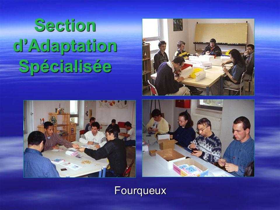Section dAdaptation Spécialisée Fourqueux
