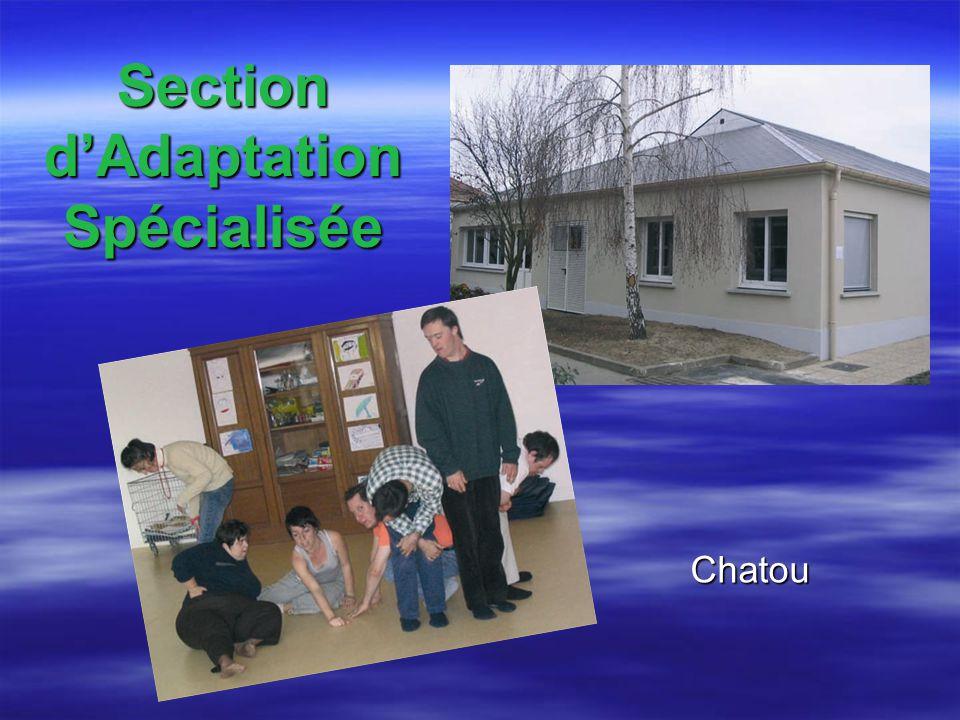 Section dAdaptation Spécialisée Chatou