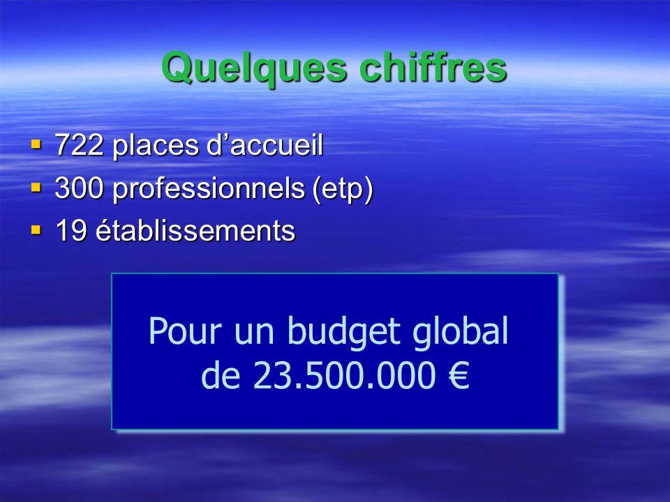 Pour un budget global de 23.500.000 Quelques chiffres 722 places daccueil 722 places daccueil 300 professionnels (etp) 300 professionnels (etp) 19 établissements 19 établissements