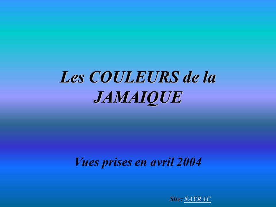 Les COULEURS de la JAMAIQUE Vues prises en avril 2004 Site: SAYRACSAYRAC