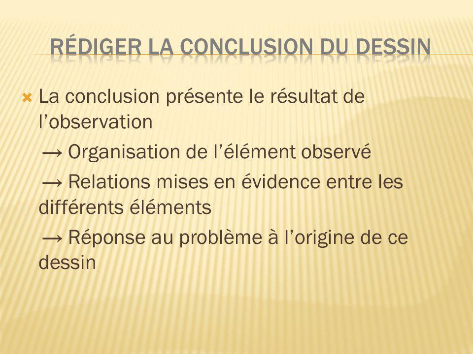 La conclusion présente le résultat de lobservation Organisation de lélément observé Relations mises en évidence entre les différents éléments Réponse au problème à lorigine de ce dessin