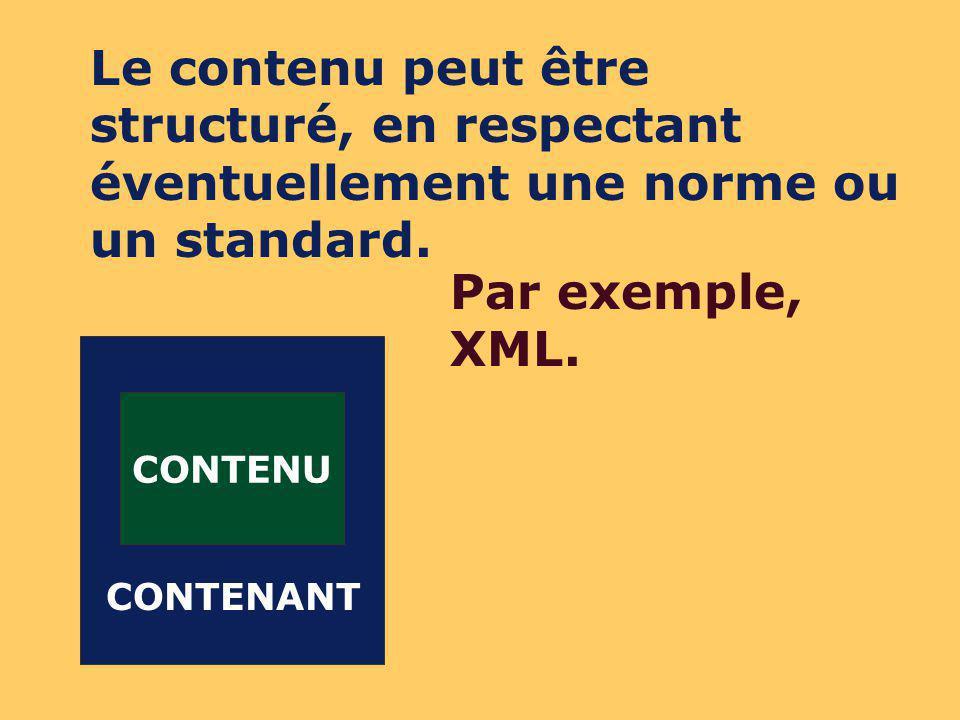 CONTENU CONTENANT MÉTA- DONNÉES Lobjet peut être décrit par des méta-données, en respectant éventuellement une norme ou un standard.