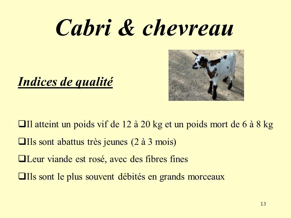 13 Cabri & chevreau Indices de qualité Il atteint un poids vif de 12 à 20 kg et un poids mort de 6 à 8 kg Ils sont abattus très jeunes (2 à 3 mois) Le