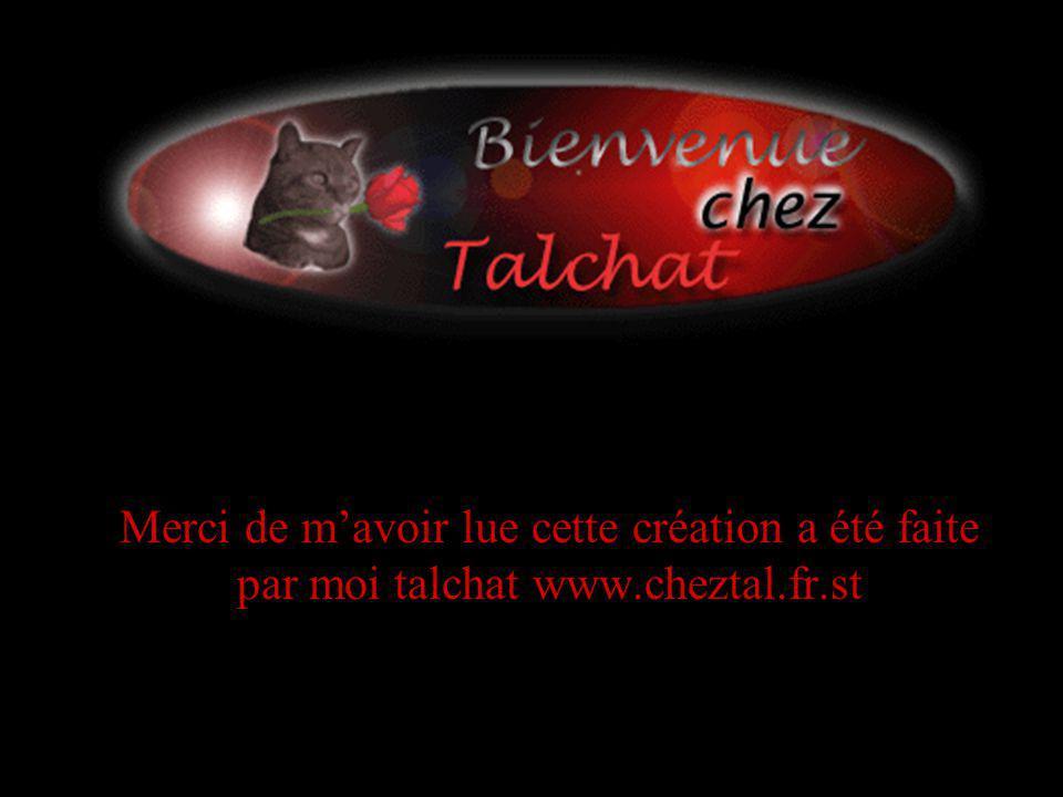 Merci de mavoir lue cette création a été faite par moi talchat www.cheztal.fr.st