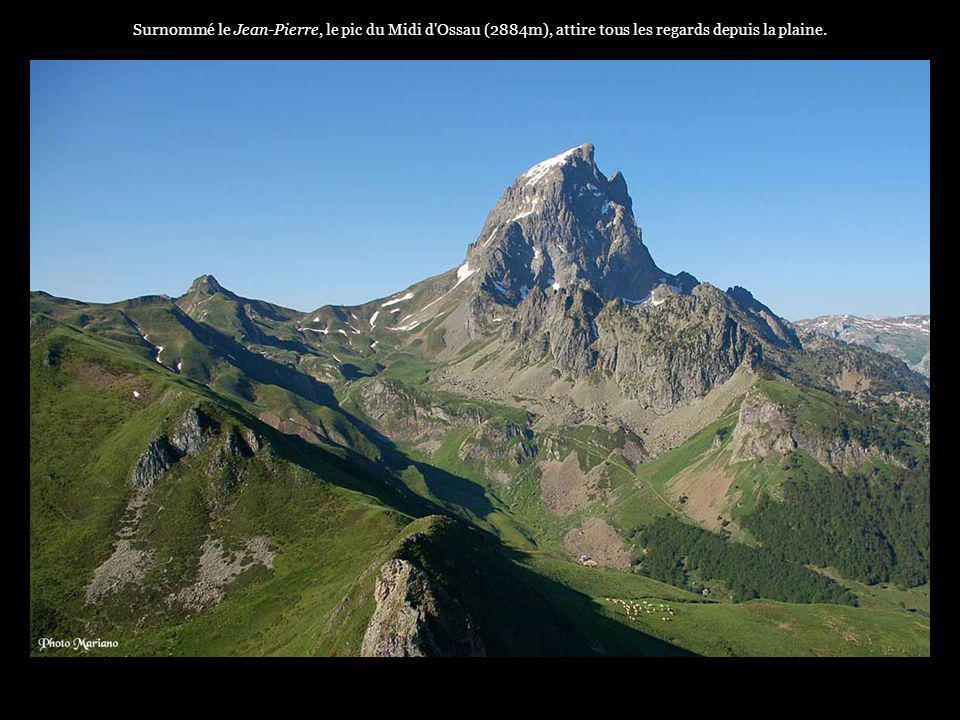 . Longue de 35 kms, la vallée d'Ossau est l'une des trois vallées béarnaises à l'Ouest des Pyrénées françaises, elle s'étend de la plaine de Pau à la