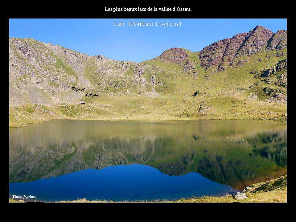 . La vallée dOssau comporte de nombreux sommets comme limposant pic du Midi dOssau...