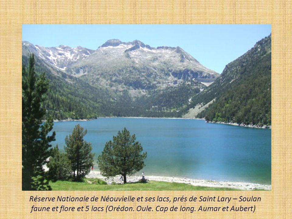 Lac du Mont Cenis entre l Italie et la France à 1974m daltitude.