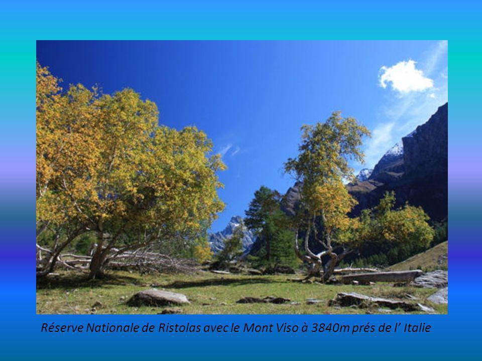 Réserve Nationale de Néouvielle et ses lacs, prés de Saint Lary – Soulan faune et flore et 5 lacs (Orédon.