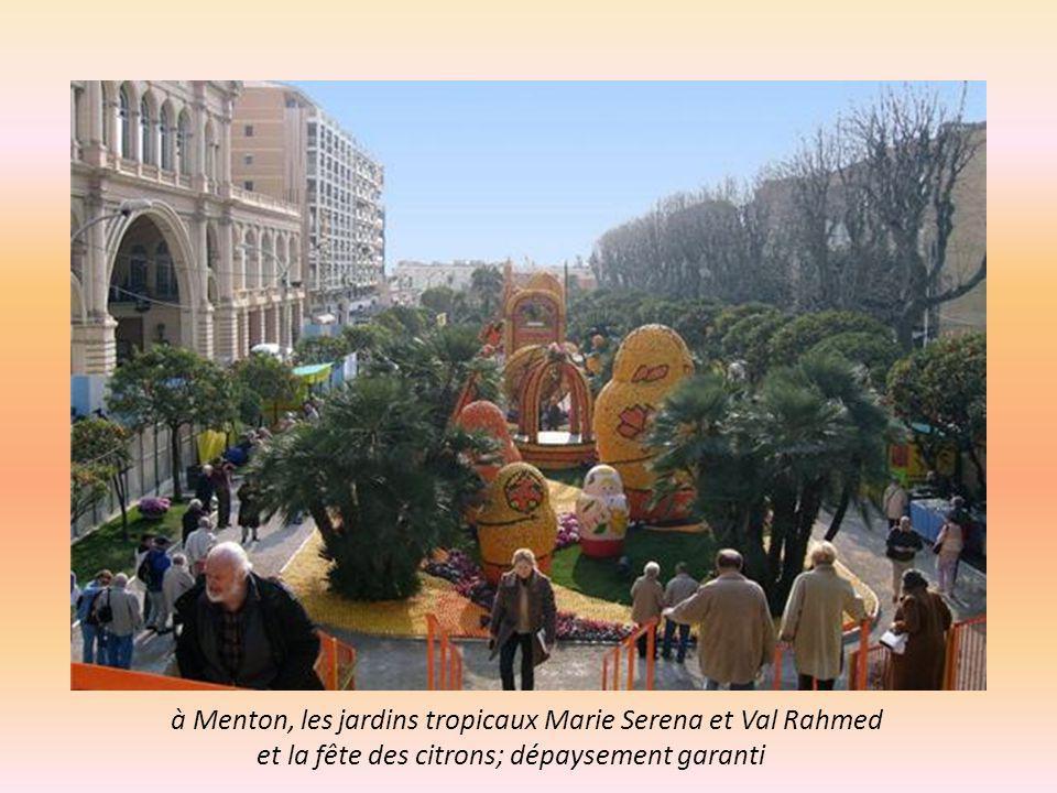 Après les sites splendides aux frontières Françaises, des lieux d évasion..en France à Maulevrier (12km de Cholet) Parc Oriental de 29ha, le plus grand jardin botanique Japonais d Europe