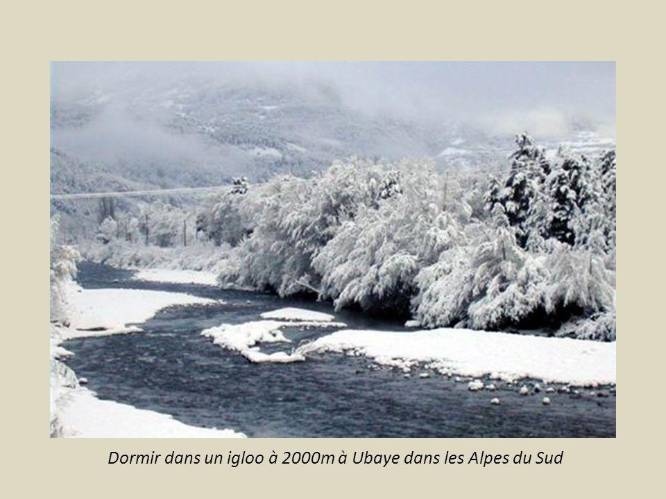 Voir une pagode à Noyant d Allier (entre Montluçon et Nevers)