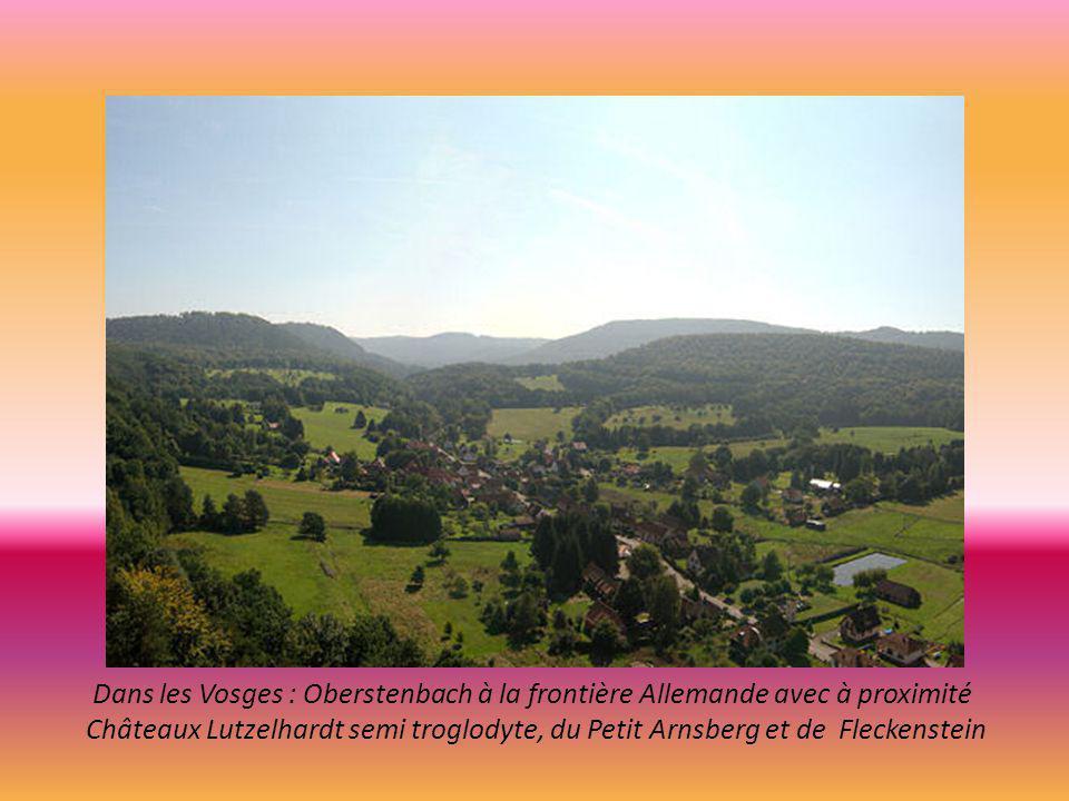 Dans les Vosges : Oberstenbach à la frontière Allemande avec à proximité Châteaux Lutzelhardt semi troglodyte, du Petit Arnsberg et de Fleckenstein
