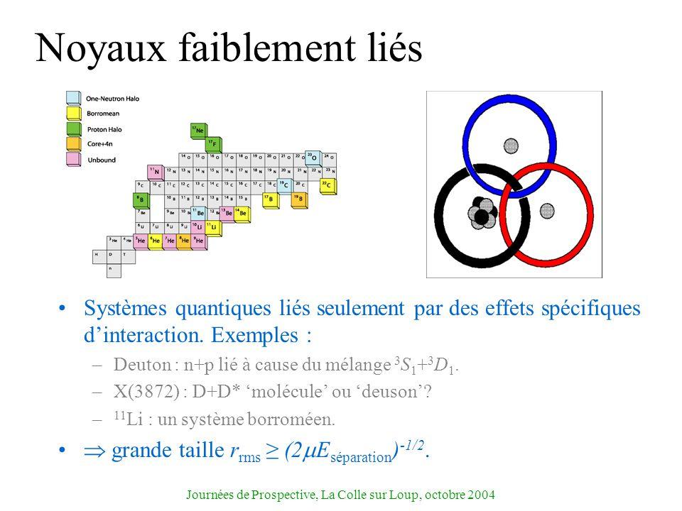 Journées de Prospective, La Colle sur Loup, octobre 2004 Noyaux faiblement liés Systèmes quantiques liés seulement par des effets spécifiques dinterac