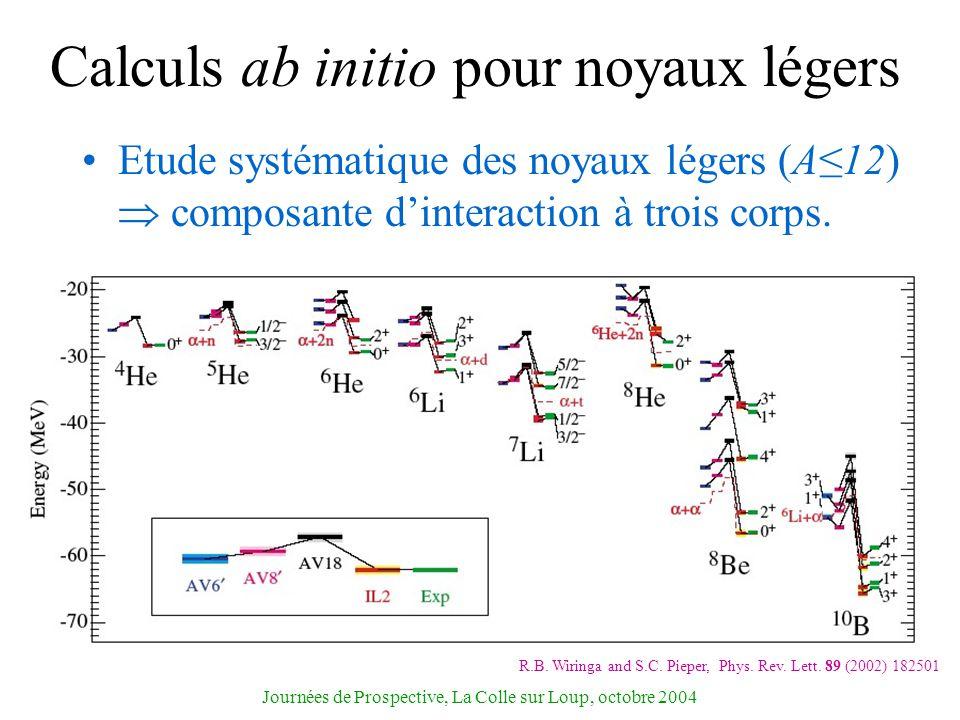 Journées de Prospective, La Colle sur Loup, octobre 2004 Calculs ab initio pour noyaux légers Etude systématique des noyaux légers (A12) composante di