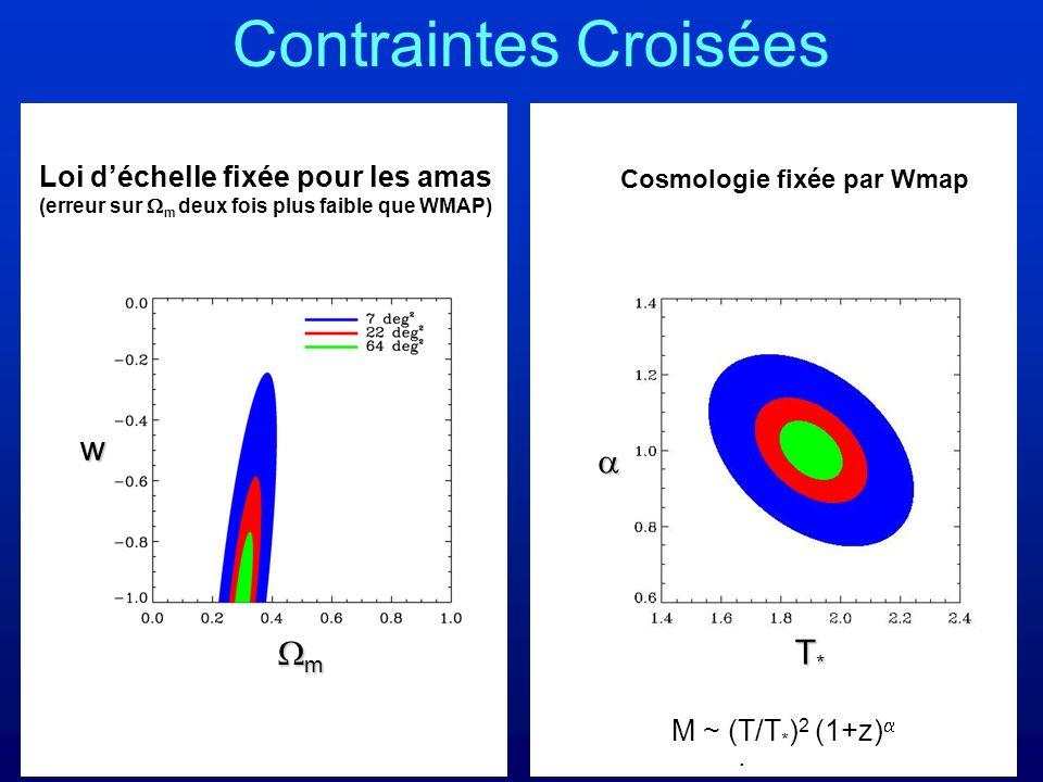 Contraintes Croisées Loi déchelle fixée pour les amas (erreur sur m deux fois plus faible que WMAP) m w T*T*T*T* Cosmologie fixée par Wmap. M ~ (T/T *