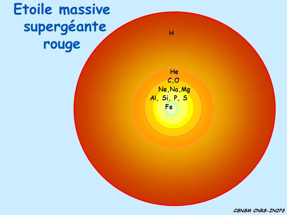 Etoile massive supergéante rouge H H He C,O He H H C,O Ne,Na,Mg H He C,O Ne,Na,Mg Al, Si, P, S H He C,O Ne,Na,Mg Al, Si, P, S Fe CSNSM CNRS-IN2P3