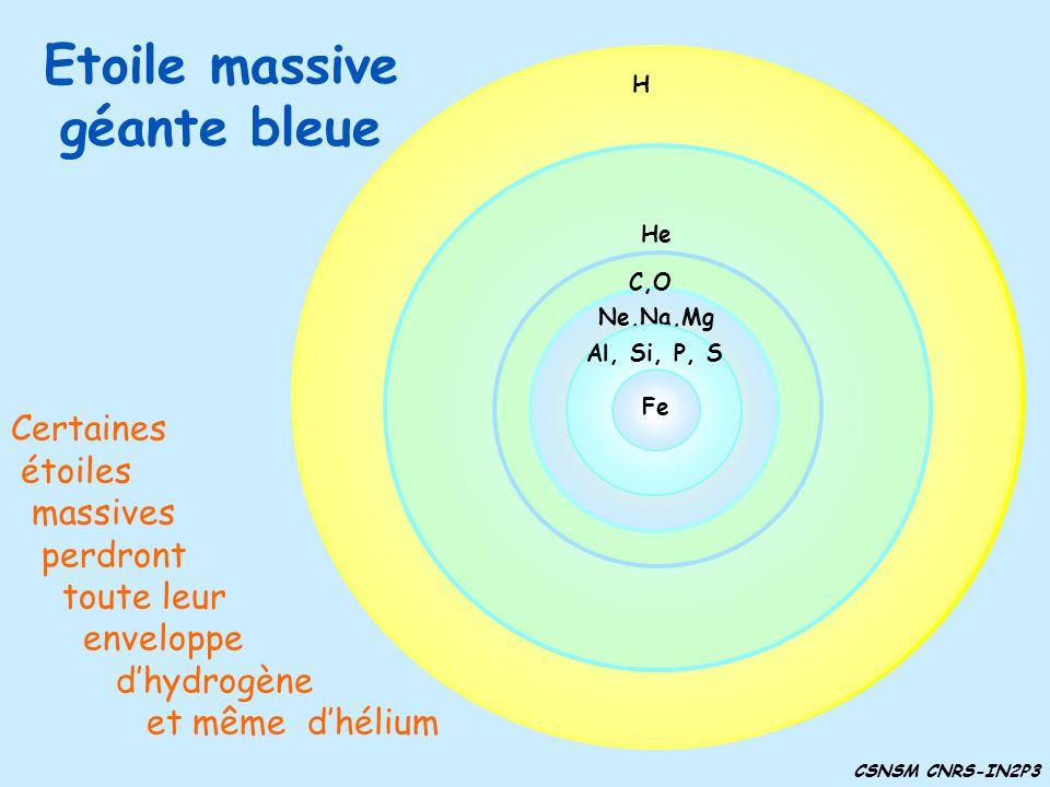 Etoile massive géante bleue He H H C,O H He C,O Ne,Na,Mg Certaines étoiles massives perdront toute leur enveloppe dhydrogène et même dhélium H He C,O