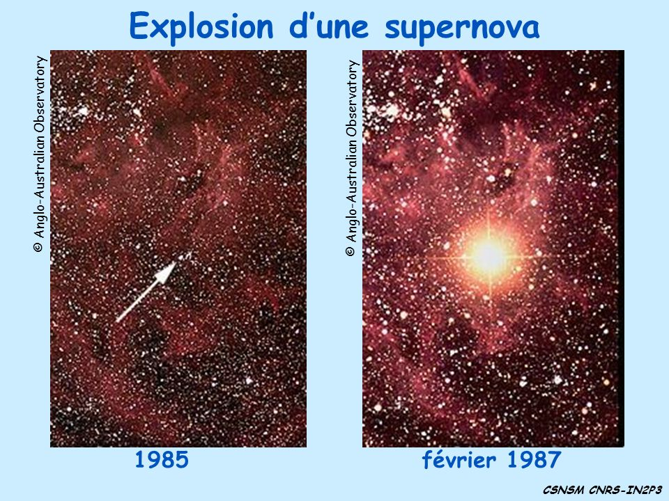Explosion dune supernova 1985 CSNSM CNRS-IN2P3 © Anglo-Australian Observatory février 1987 © Anglo-Australian Observatory