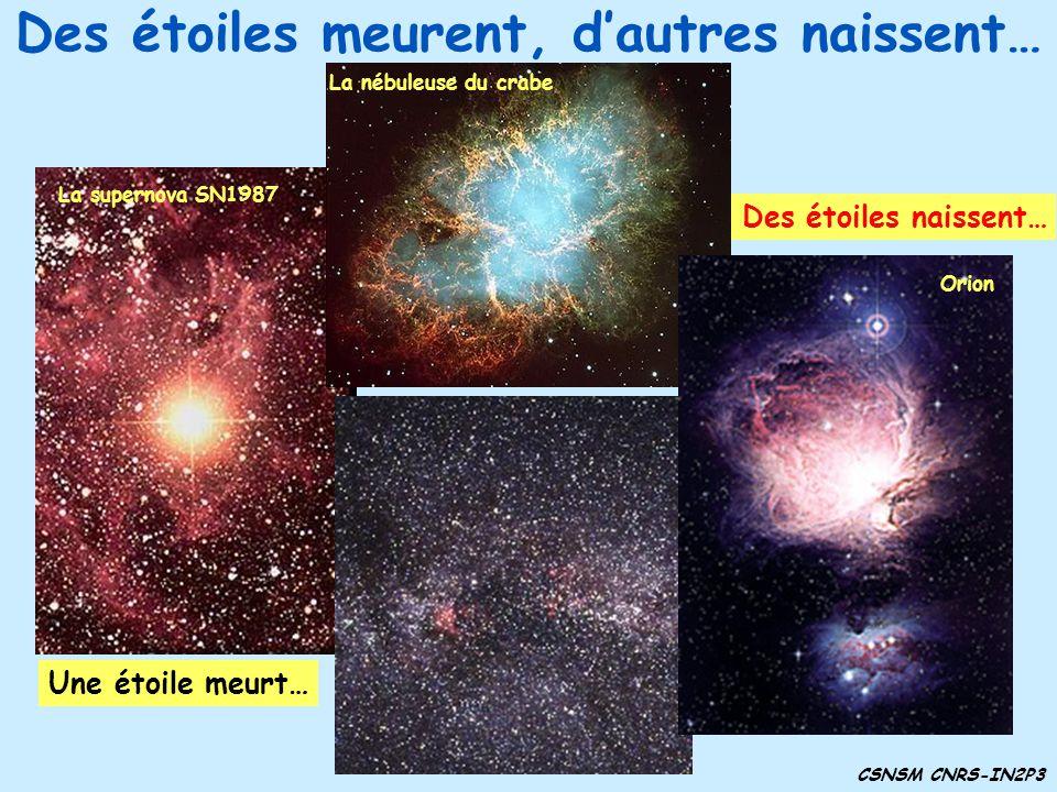 Des étoiles meurent, dautres naissent… Une étoile meurt… Des étoiles naissent… CSNSM CNRS-IN2P3 La supernova SN1987 La nébuleuse du crabe Orion