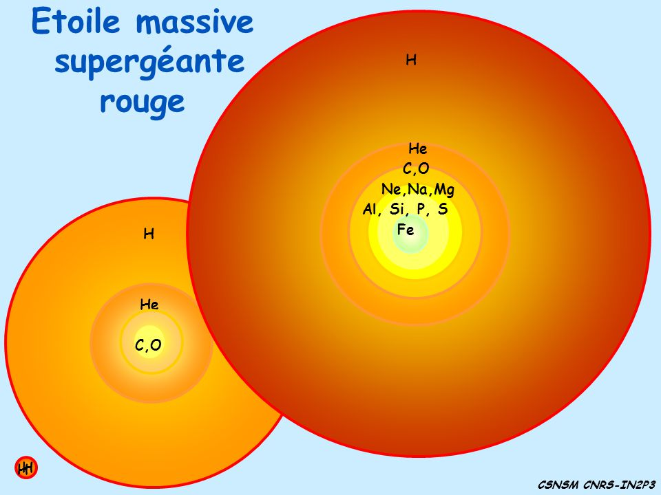 Etoile massive supergéante rouge H He C,O H H He C,O He H H C,O Ne,Na,Mg H He C,O Ne,Na,Mg Al, Si, P, S H He C,O Ne,Na,Mg Al, Si, P, S Fe CSNSM CNRS-I